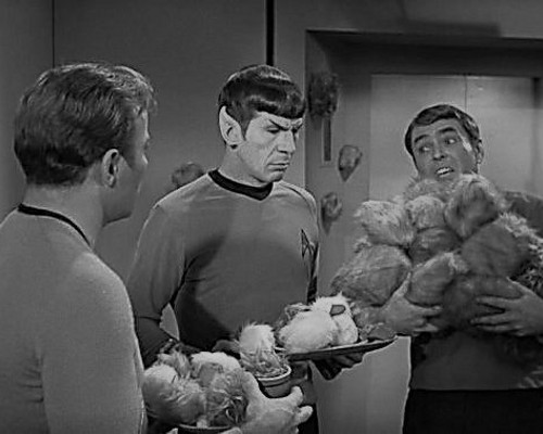 Scene Star Trek episode 'Trouble with Tribbles' Mark Glynn has chosen to represent himself